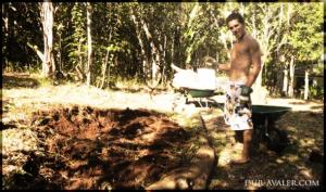 buttes permaculture récupération eaux de pluie graines F1 biologique ver de terre légumineuse toilettes sèches économie d'énergie légumes
