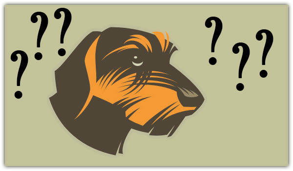 chien-royal-canin-stress-calme