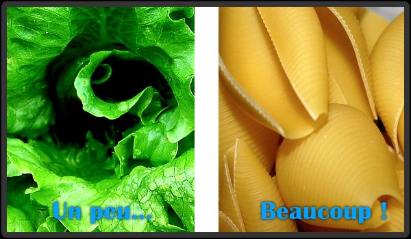pates-riz-legumes-salade-feculent
