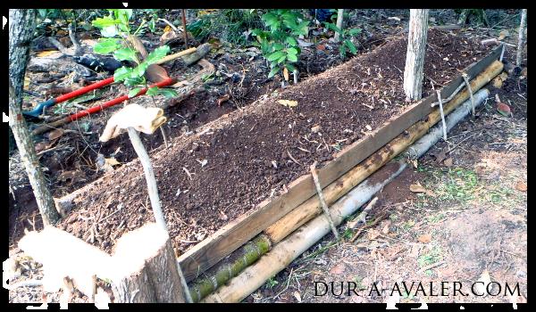 Utiliser la permaculture pour se lib rer de notre soci t for Creer une butte permaculture