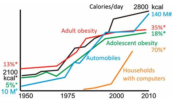 jeûne intermittent restriction calorique jour alterné consommation repas par jour tumeurs système immunitaire calories