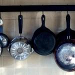 marion kaplan vitaliseur cuiseur vapeur graisses saturés toxines pesticides onde de forme cuisine quantique