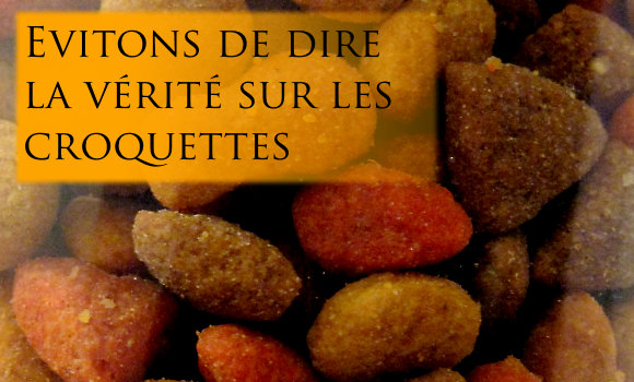 croquettes-cereales-veterinaires-purina-glucides