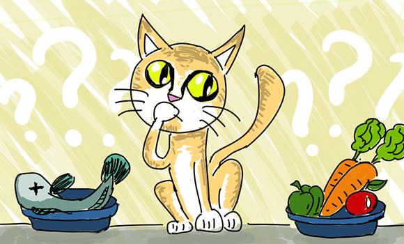chat-vegetalien-vegetarien-cereale-gluten