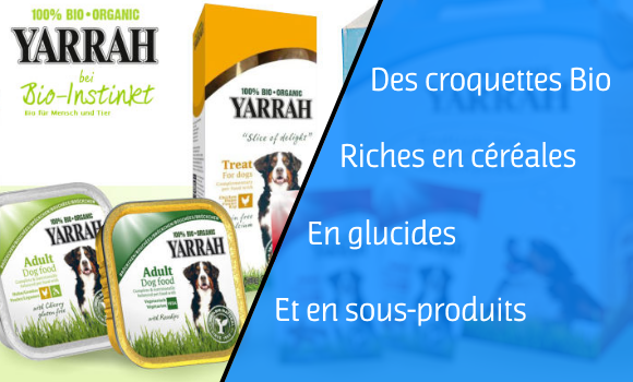 yarrah-biologique-cereales-glucides-ble