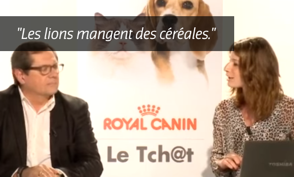 royal-canin-croquette-cereale-chien