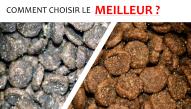 poison-croquette-chien-chat-veterinaire-mini