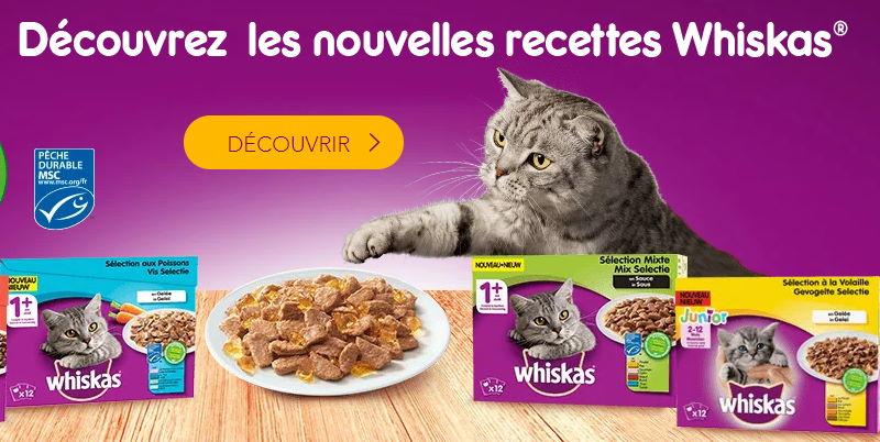 Whiskas : analyse critique des croquettes, des friandises, et des boîtes humides de la marque pour chat, chaton et senior.